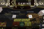 SA Gaming: Live Dragon Tiger